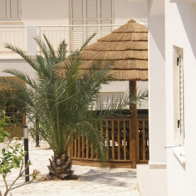 The Safari Breeze House with combination thatch roof
