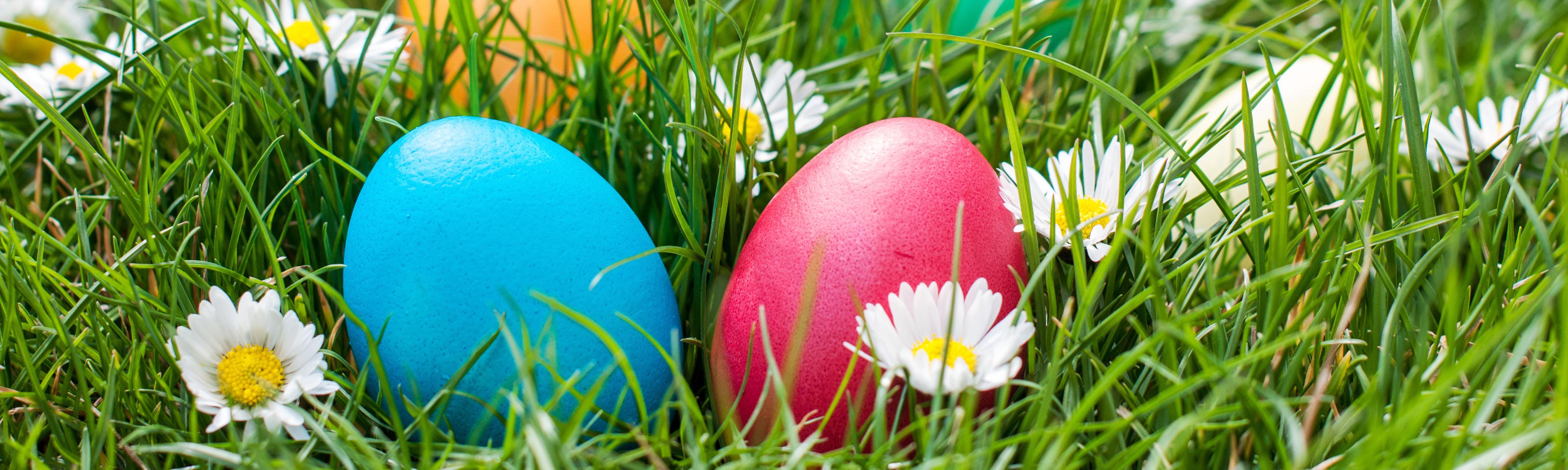 Easter egg hunt malvern garden buildings
