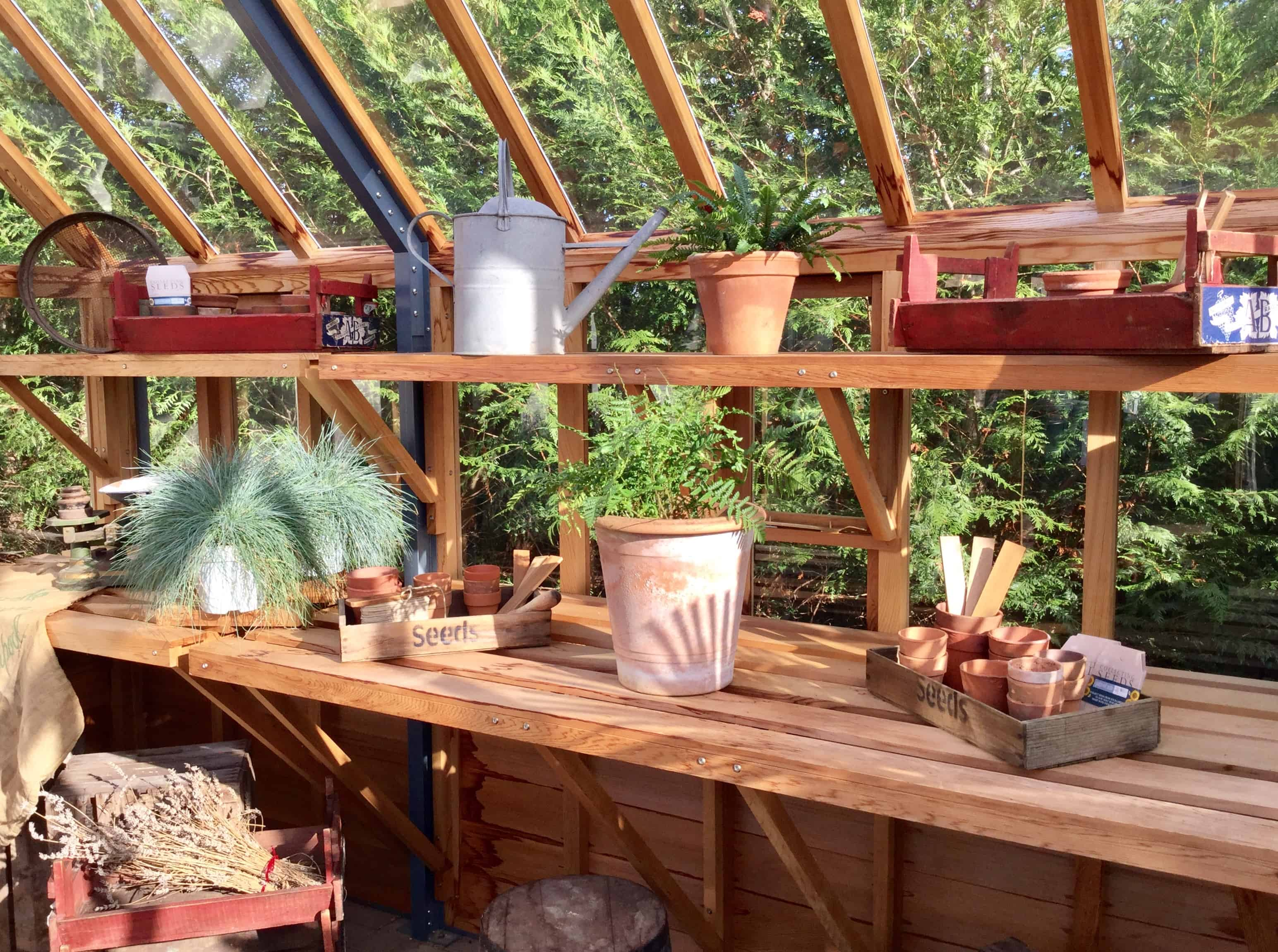 Plant pots inside greenhouse