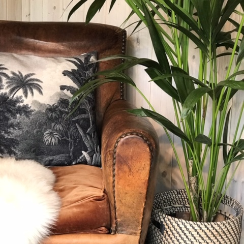 Close up of brown leather chair with monochrome cushion