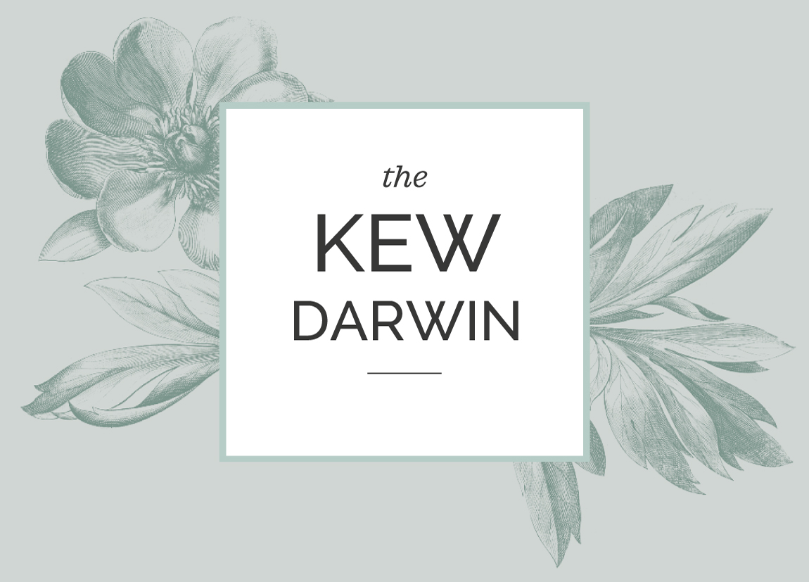 The Kew Darwin from the Kew Collection by Malvern Garden Buildings