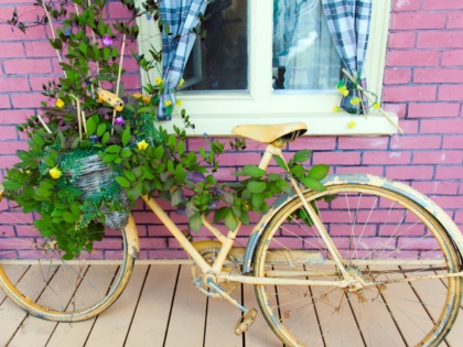 10 ideas to add oomph to your garden