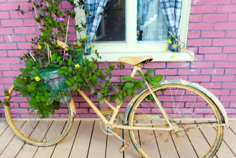 Old bike pot planter