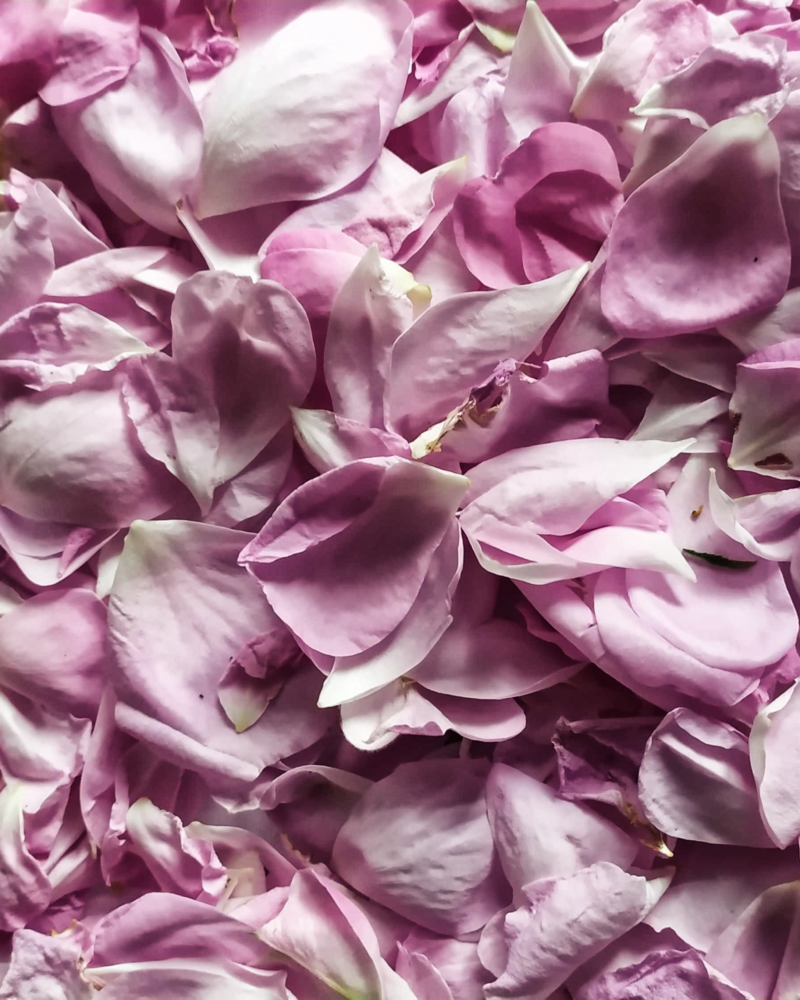 Flower Food: Rose Recipes