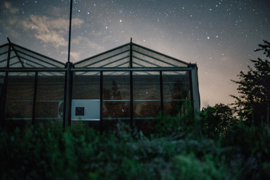 Greenhouse in a nighttime scene