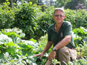 Notes from the Kitchen Garden: Fork to Fork