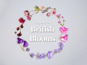 Botanical Wisdom: British Blooms Mini Guide