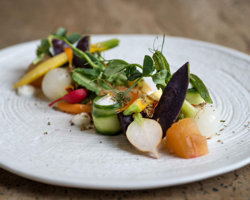 Close up of white plate with crisp vegetables salad arranged on it.