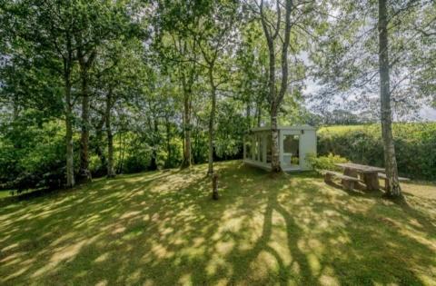 Garden office sat in wooded glade