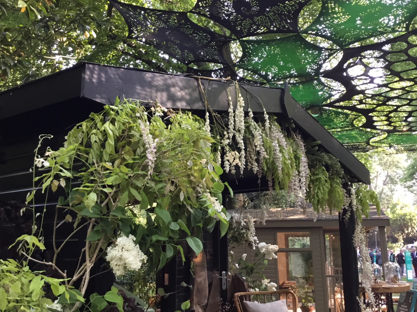 Toms Studio at Chelsea Flower Show 2018 was adorned with a wisteria vine on the roofline